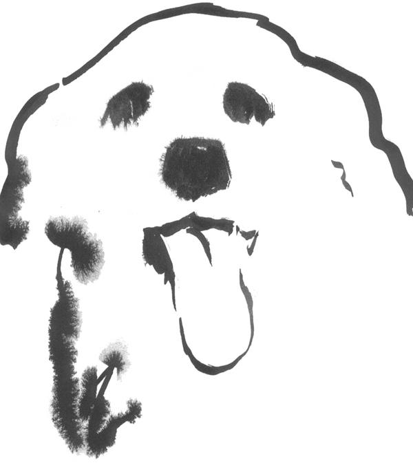 Canine Kind