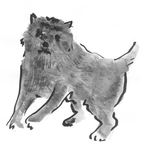 Nipping Dog